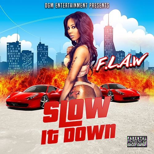 Slow It Down by Flaw