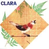 Clara de Clara Nunes