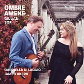 Ombre amene by Various Artists