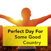 Perfect Day For Some Good Country de Various Artists
