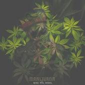 Marijuana by King Ital Rebel