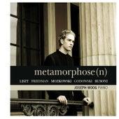 Metamorphose - Liszt, Friedman, Moszkowki, Godowsky, Busoni by Joseph Moog