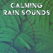 Calming Rain Sounds – Nature Waves to Meditate, Inner Peace, Mind Relaxation, Soothing Sounds by Ambient Rain