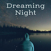 Dreaming Night – Soothing Sounds for Sleep, Bedtime, Deep Dreams, Calm Night, Restful Sleep, Nature Sounds to Calm Down, Relaxing Music at Night de Nature Sound Collection