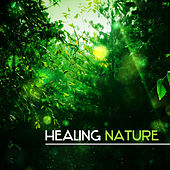Healing Nature – Calming Music for Spa, Massage, Wellness, Zen, Soothing Nature Sounds for Relaxation, Healing Body, Stress Relief de Ambient Music Therapy