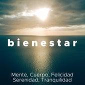 Bienestar - Música Relajante para Mente, Cuerpo, Felicidad, Serenidad, Tranquilidad de Agua Del Mar