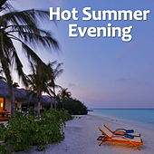 Hot Summer Evening de Various Artists