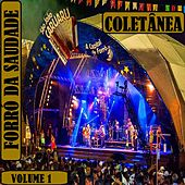 Coletânea Forró da Saudade, Vol. 1 de Various Artists