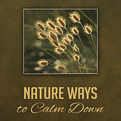Nature Ways to Calm Down – Soft New Age Music, Peaceful Sounds, Stress Free, Beautiful Memories by Echoes of Nature