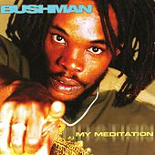 My Meditation de Bushman