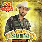 20 Exitos Con Banda by El Gallo De La Sierra