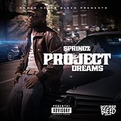 Project Dreams by Springz