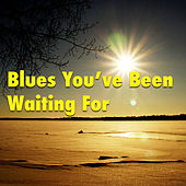 Blues You've Been Waiting For by Various Artists