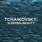 Tchaikovsky: Sleeping Beauty de Various Artists