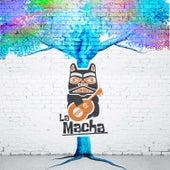 Árbol Viejo by Macha