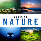 Soothing Nature – Pure Relaxation, New Age Music for Rest, Soft Nature Sounds to Calm Down, Just Relax, Ocean Waves, Zen Music de Nature Sound Collection