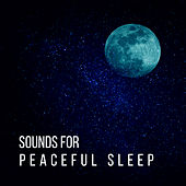 Sounds for Peaceful Sleep – Calm Melodies, Inner Peace, Chilled Sounds, Sleep Well, Night Relaxation von Soothing Sounds