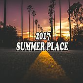 2017 Summer Place von Various Artists