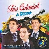 A Gozar. Solo Bailables Vol. 3 de Trio Colonial (Ecuador)