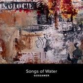 Gossamer by Songs of Water