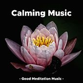 Calming Music - Good Meditation Music de Various Artists