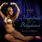 Didem Presents Magnificent Bellydance de Various Artists