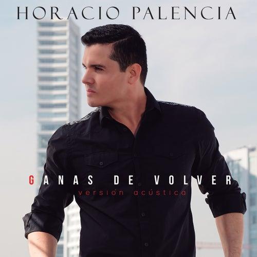 Ganas De Volver (Versión Acústica) by Horacio Palencia