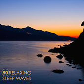 50 Relaxing Sleep Waves - Deep Sleep Music for Meditation and Relaxation, Soothing Sounds of Nature for Sleeping with Water Sounds and Forest by Singing Sirens