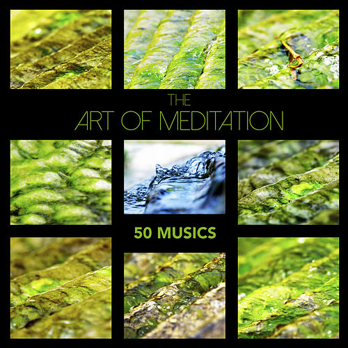 The Art of Meditation: 50 Musics - Zen Garden Meditation Music & Soothing Sleep Sounds for Relaxation, Mindfulness Therapy and Healing Sleep by Relaxing Mindfulness Meditation Relaxation Maestro