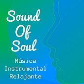 Sound Of Soul - Música Instrumental Relajante para Terapia de Masajes Yoga Ejercicios Meditación Consciente con Sonidos New Age Naturales by Sleep Music Lullabies for Deep Sleep