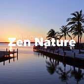 Musique Zen Nature de Various Artists