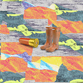 Shellington Boots de Various Artists