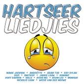 Emoji - Hartseer Liedjies von Various Artists