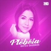 Bateu Saudade by MC Plebéia