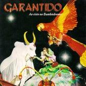 Garantido 2001 (Ao Vivo) de Boi Bumbá Garantido