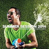 Summer Session 2014 by Various Artists