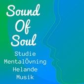 Sound Of Soul - Studie Mental Övning Helande Musik för Mindfulness Terapi Självhypnos Hälsa och Välbefinnande med Naturens Instrumental Ljud by Sleep Music Lullabies for Deep Sleep