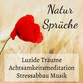 Natur Sprüche - Luzide Träume Achtsamkeitsmeditation Stressabbau Musik mit Beruhigende Binaurale Entspannende New Age Geräusche by Klaviermusik Entspannen
