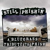 Still Phishin': A Bluegrass Tribute to Phish, Vol. 2 von Various Artists