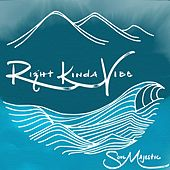 Right Kinda Vibe - Single by Soul Majestic