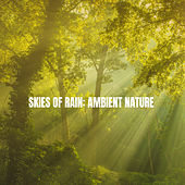 Skies of Rain: Ambient Nature by Various Artists