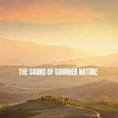 The Sound of Summer Nature by Various Artists