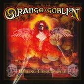 Healing Through Fire by Orange Goblin