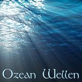 Ozean Wellen - Relax Musik und Pazifische Ozeanwellen Klangeffekte zur Entspannung, Meditation, Spa und Gesunden Schlaf by Moana