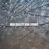 High Quality Rain Sounds by Various Artists