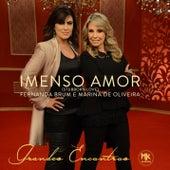 Imenso Amor (Stubborn Love) by Fernanda Brum