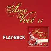 Amo Você Vol.14 - Playback von Various Artists