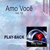 Amo Você Vol.12 - Playback von Various Artists