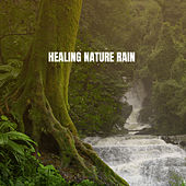 Healing Nature Rain by Various Artists