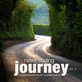 Never Ending Journey, Vol. 6 by Pablo Perez